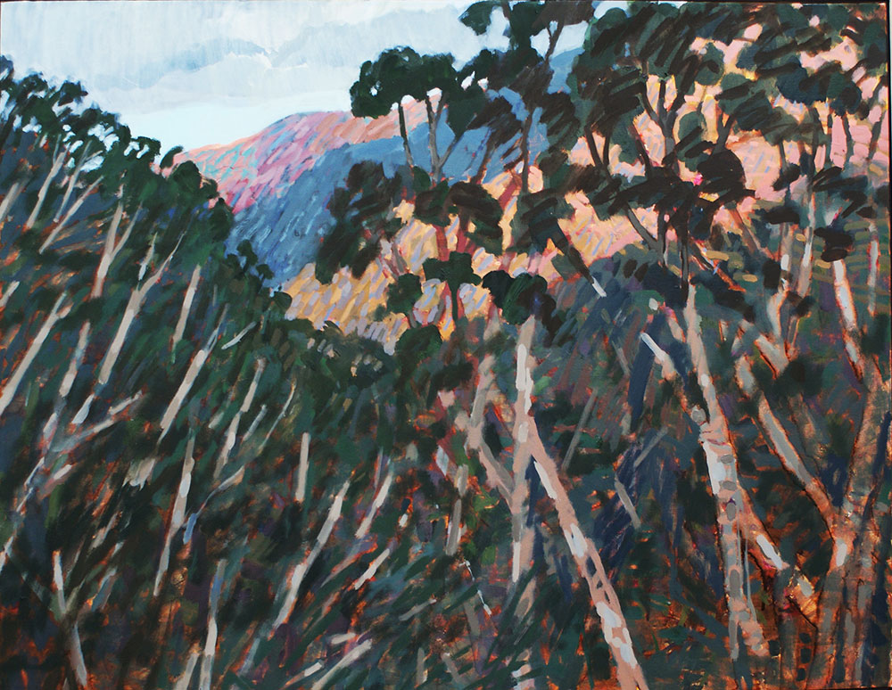 Blue Mountains #4 – 2015